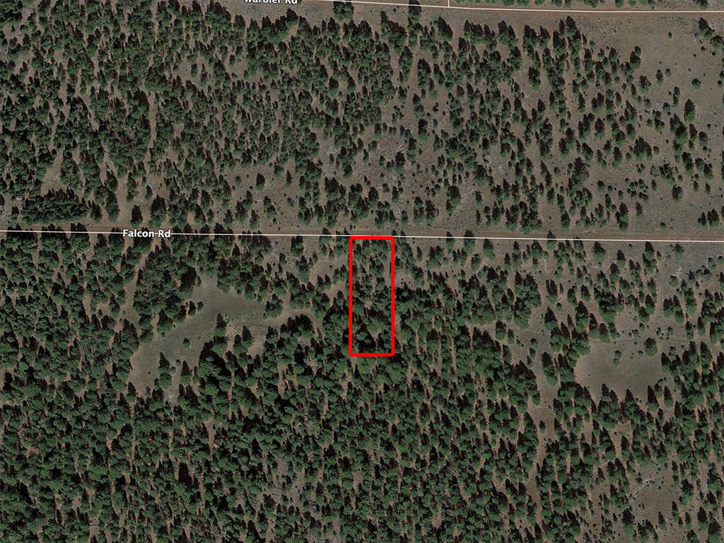Nearly an acre in California Pines - Image 1