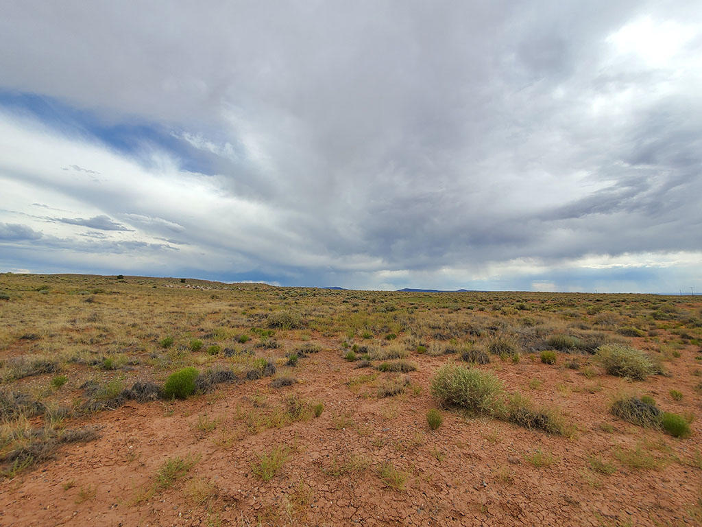 Explore the Possibilities on this 40 Acre Property - Image 4
