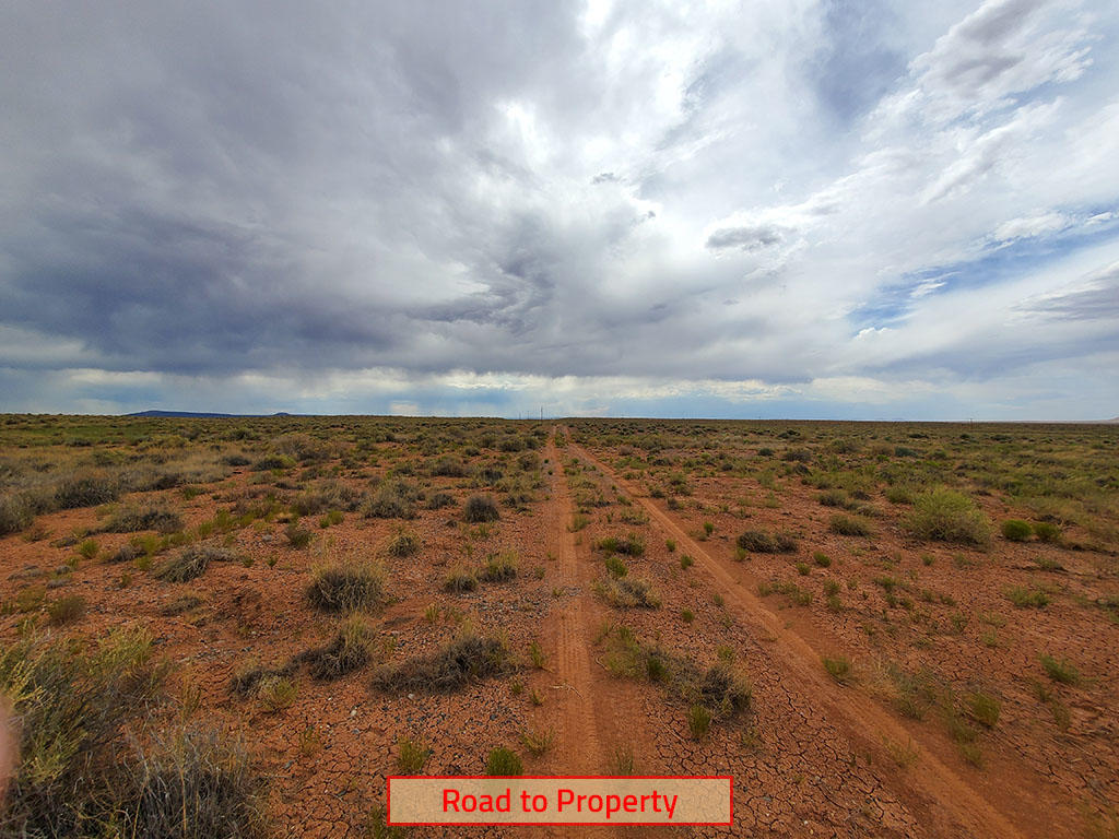 Explore the Possibilities on this 40 Acre Property - Image 5