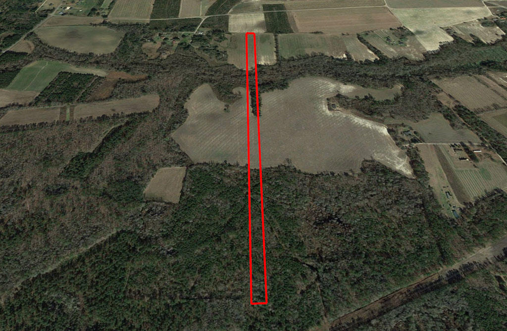 Large Acreage Close to Lake Moultrie in Rural South Carolina - Image 2
