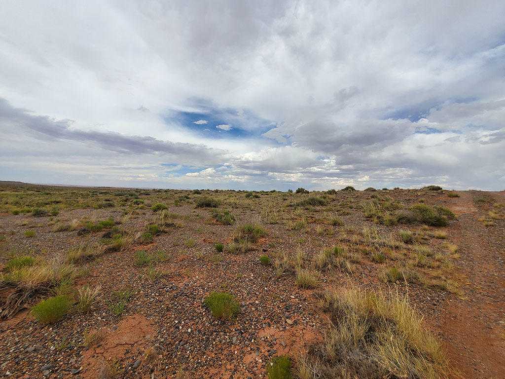 Explore the Possibilities on this 40 Acre Property - Image 1