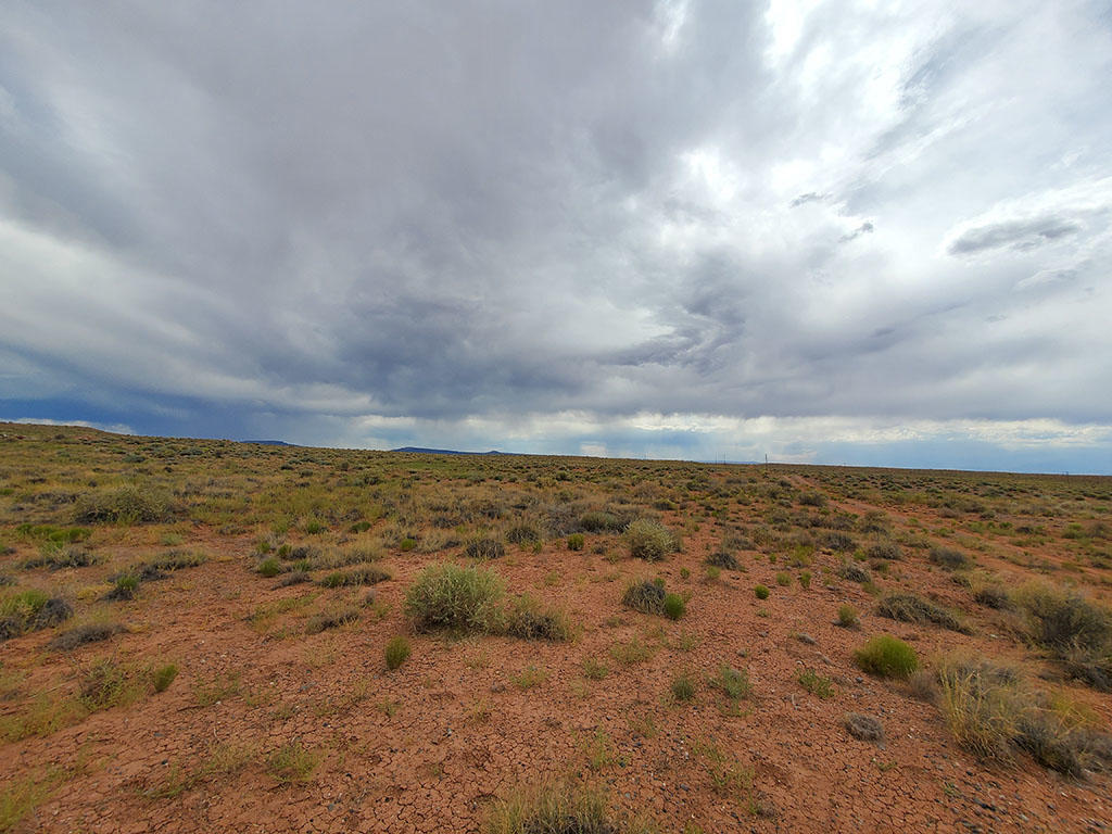 Forty Acres For Your Tiny Home or RV - Image 4