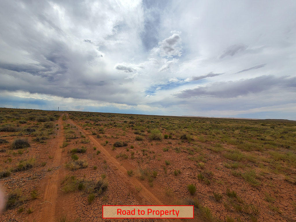 Forty Acres For Your Tiny Home or RV - Image 5