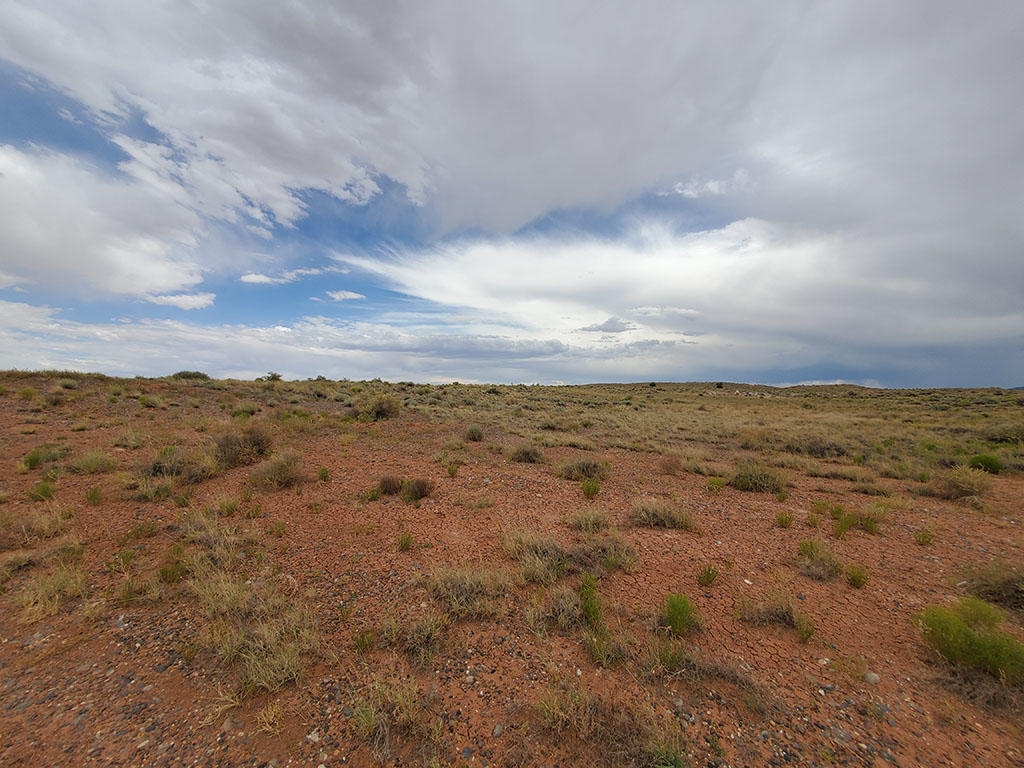 Forty Acres For Your Tiny Home or RV - Image 1