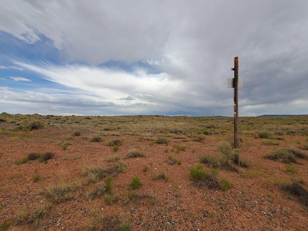 Thirty Nine Acres of Land in the Arizona Sunshine - Image 4