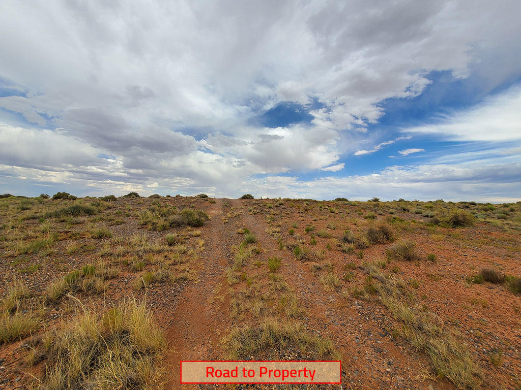 Peaceful and Private Thirty Eight Acres in Arizona - Image 4