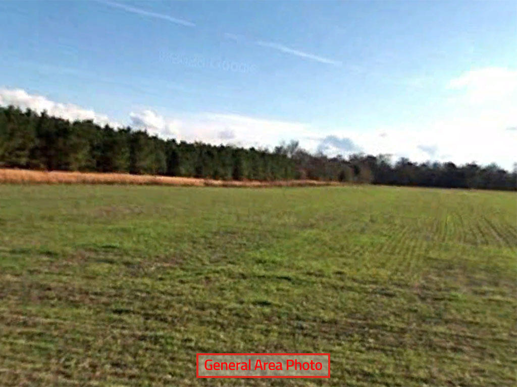 Large Acreage Close to Lake Moultrie in Rural South Carolina - Image 3
