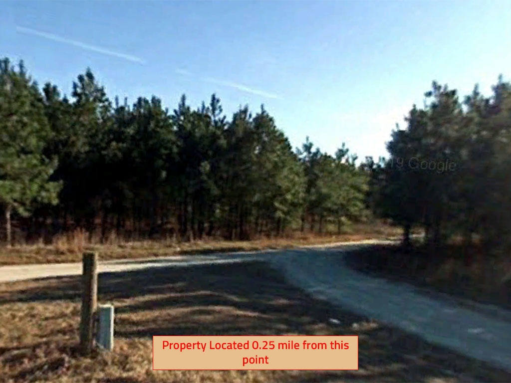 Large Acreage Close to Lake Moultrie in Rural South Carolina - Image 4