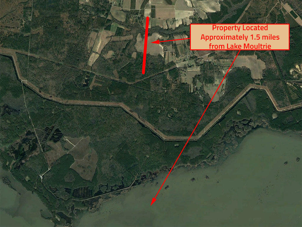 Large Acreage Close to Lake Moultrie in Rural South Carolina - Image 5