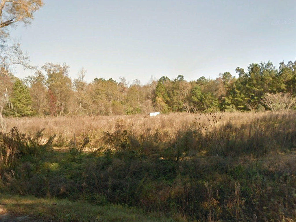 Attractive Acreage Well Placed for Many Uses - Image 4