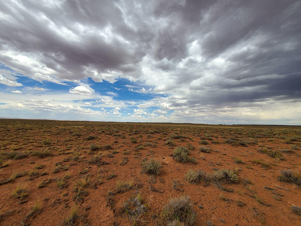 Forty Acres One Hour Outside Flagstaff AZ - Image 3