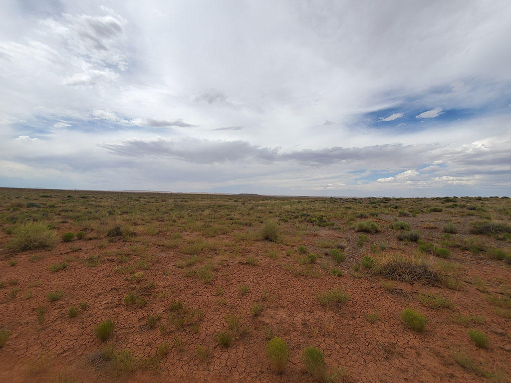 Twenty Acres Near Winslow AZ - Image 1