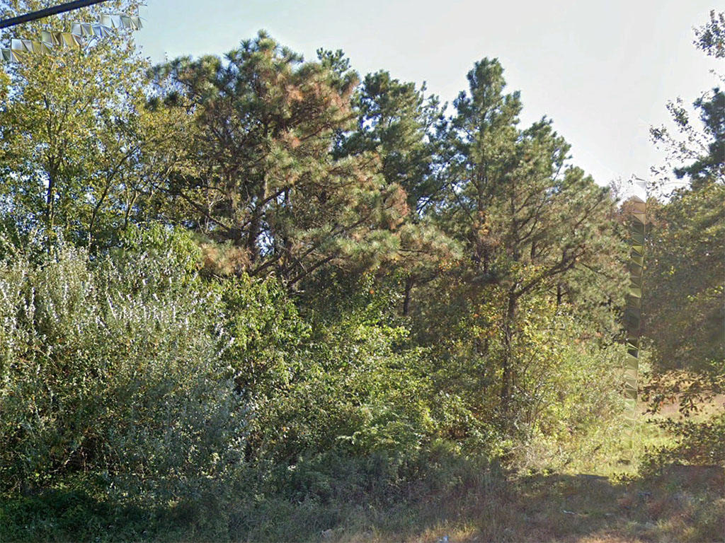 Enjoy Your Own Pond on this Large Acreage New Jersey Land - Image 1
