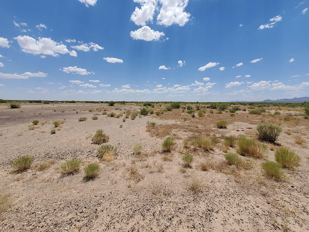 Spacious Half Acre of Private Desert Land - Image 4