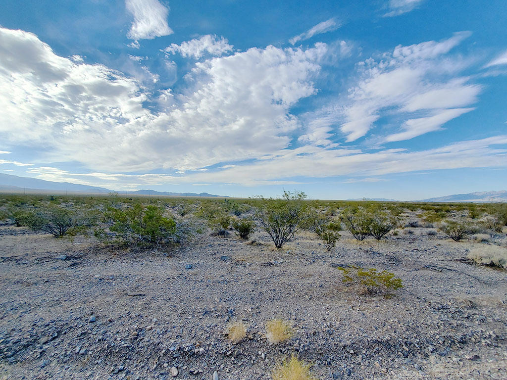 Cleared Half Acre in Southern Nevada - Image 3