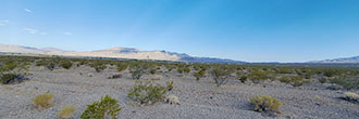 Cleared Half Acre in Southern Nevada