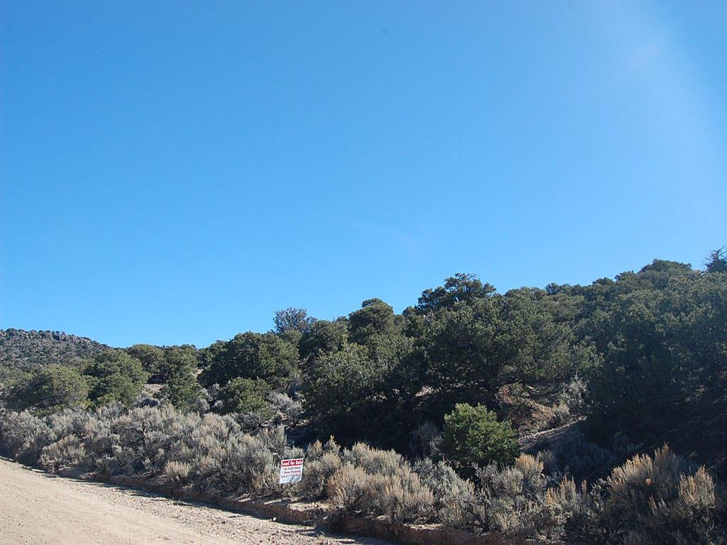 Colorado 5 Acres in Rural Location - Image 0