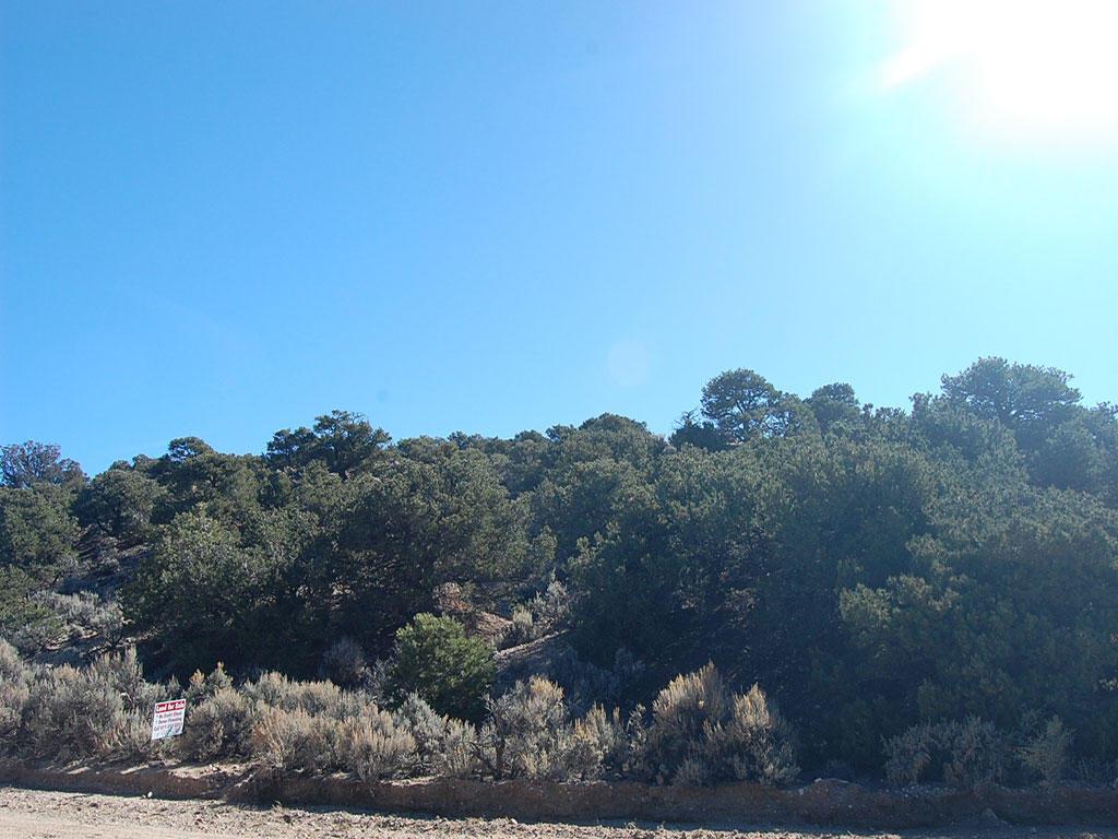 Colorado 5 Acres in Rural Location - Image 4