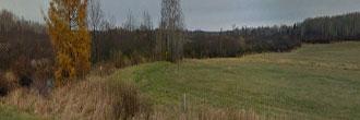 Wisconsin Timberland Near White Birch Lake
