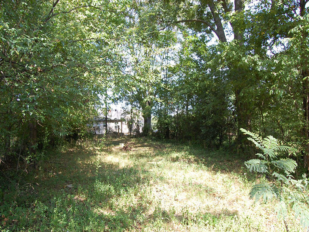 Historic District Memphis Residential Lot - Image 0