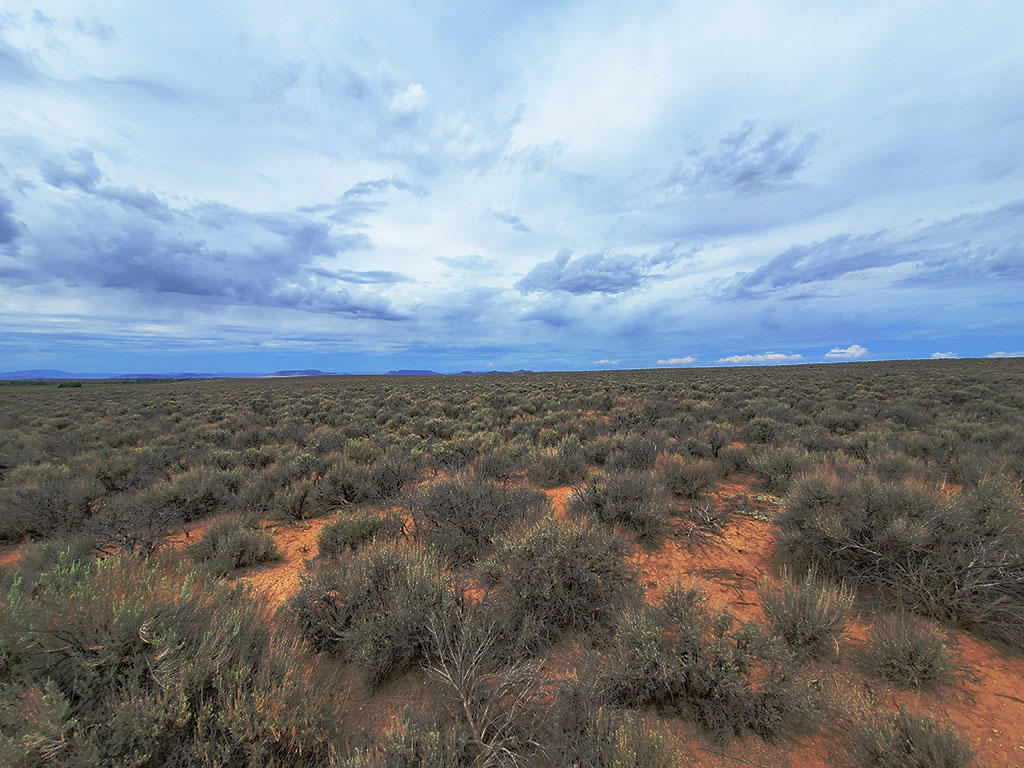 Five Acres in the San Luis Valley - Image 0