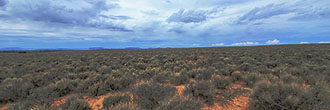 Five Acres in the San Luis Valley