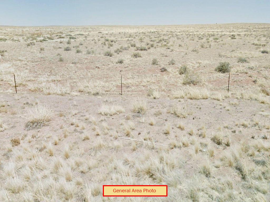 Off Grid Living on 2 Acres of Desert Land - Image 3