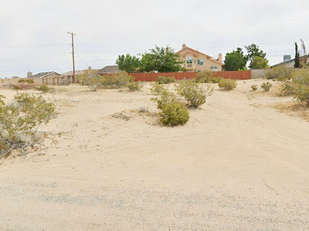 Get in Close to the Action with this California City Find - Image 3