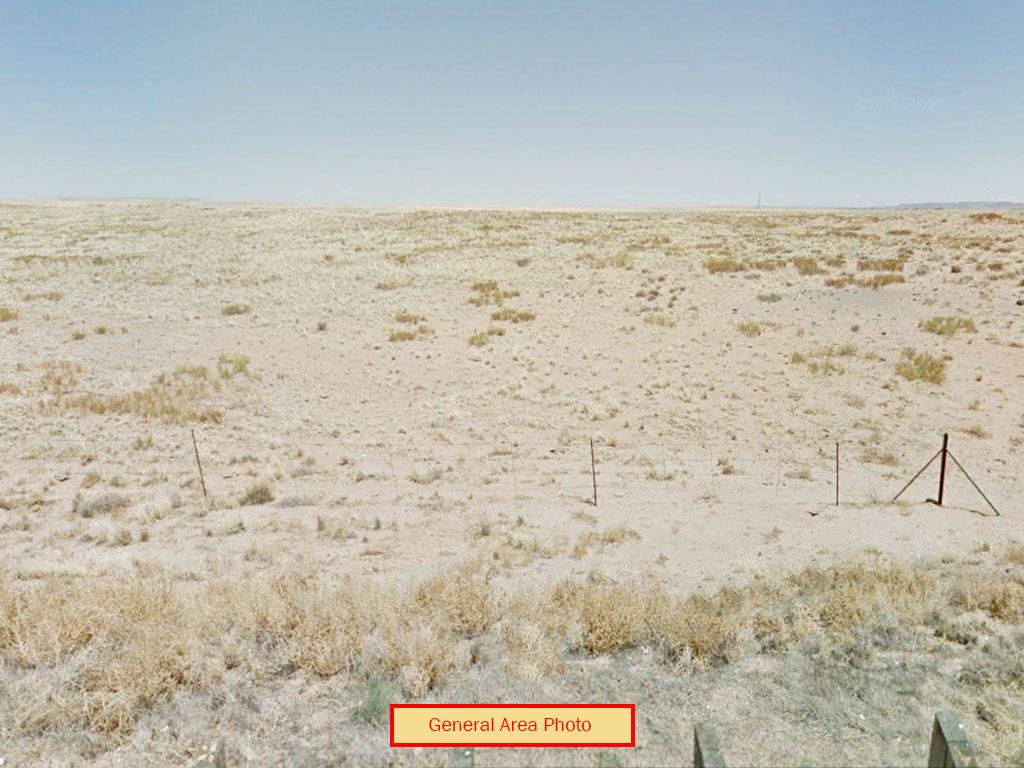 Spacious 2 Acres in Rural Desert Setting - Image 3
