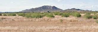 Arizona City Homesite Refuge
