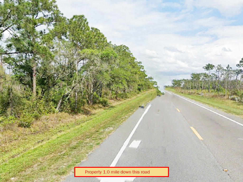 Secluded 1 Acre in Rural Florida - Image 4