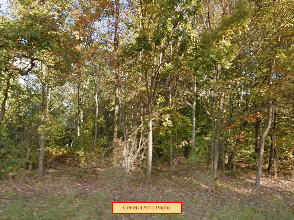 Fertile Land Near Lehigh River - Image 3