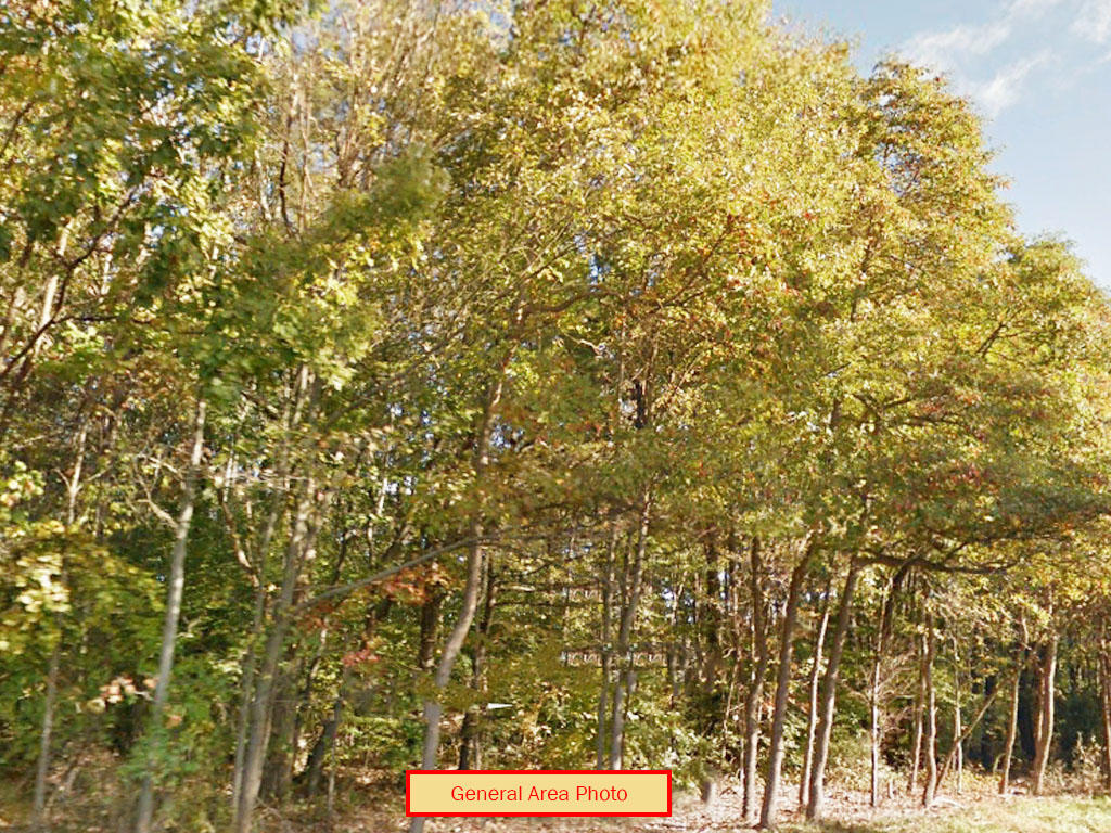 Fertile Land Near Lehigh River - Image 0