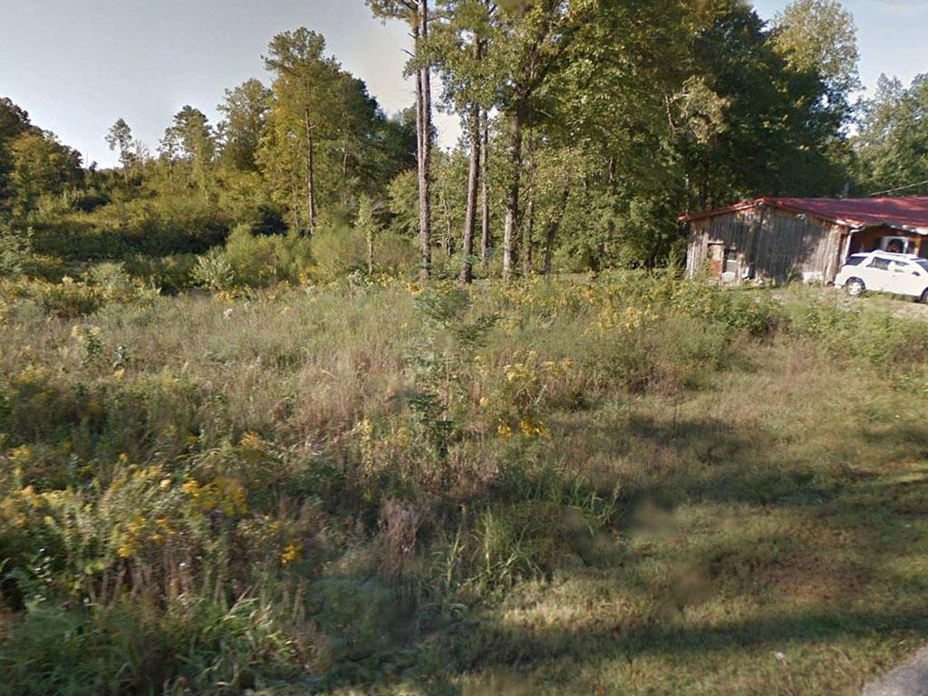 Amazing 8 Acres Offers Private Sanctuary - Image 3