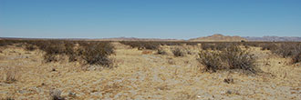 Two and a Half Acres Just Outside of Palmdale
