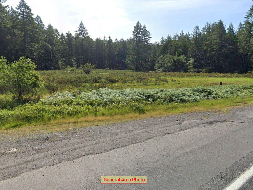 Wonderful Residential Gem Half Mile from Beautiful Clear Lake - Image 0