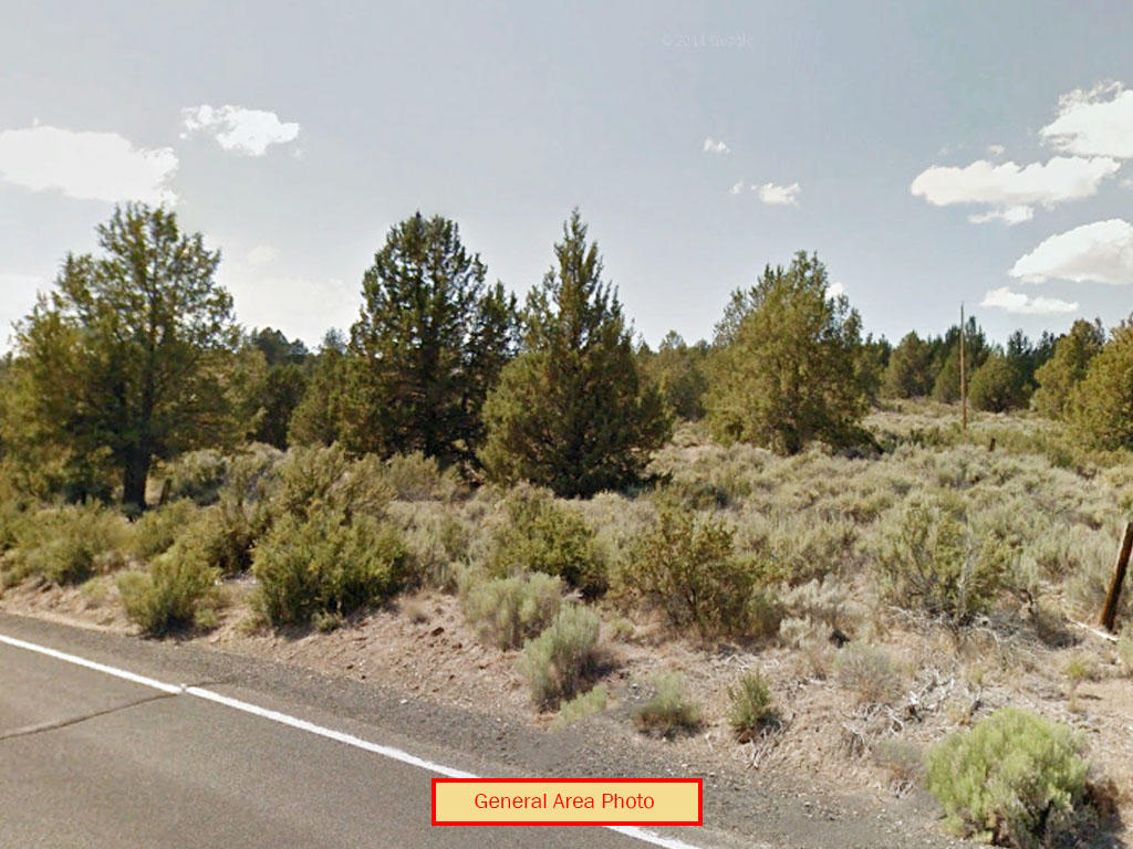 Attractive 2 Acres of Tranquil Oregon Land - Image 3