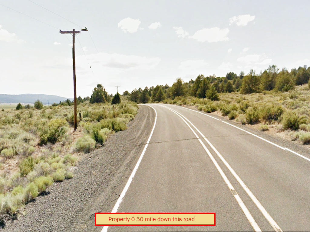 Attractive 2 Acres of Tranquil Oregon Land - Image 4