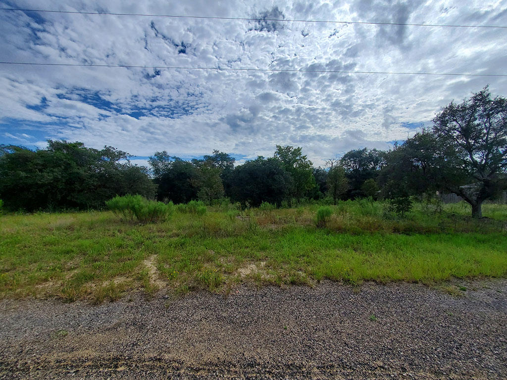 Sandy Quarter Acre Lot in Citrus Springs - Image 3