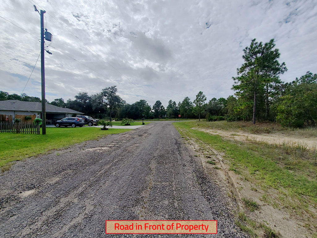 Sandy Quarter Acre Lot in Citrus Springs - Image 4