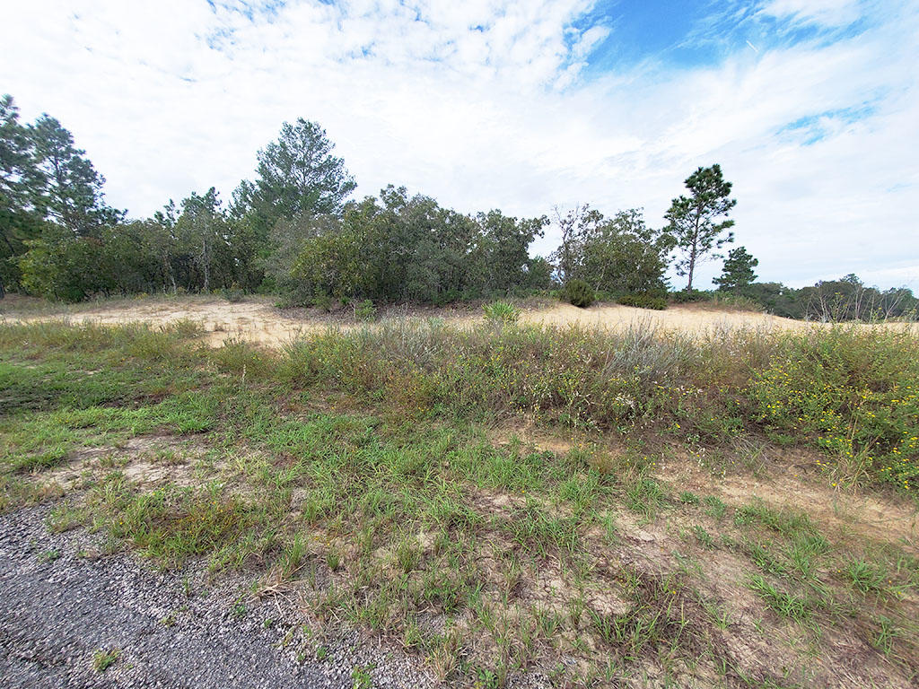 Sandy Quarter Acre Lot in Citrus Springs - Image 0