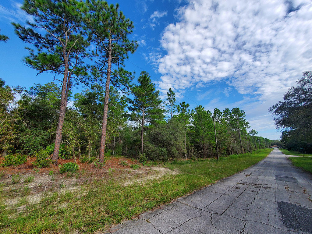 Nearly a Quarter acre in Citrus Springs - Image 3