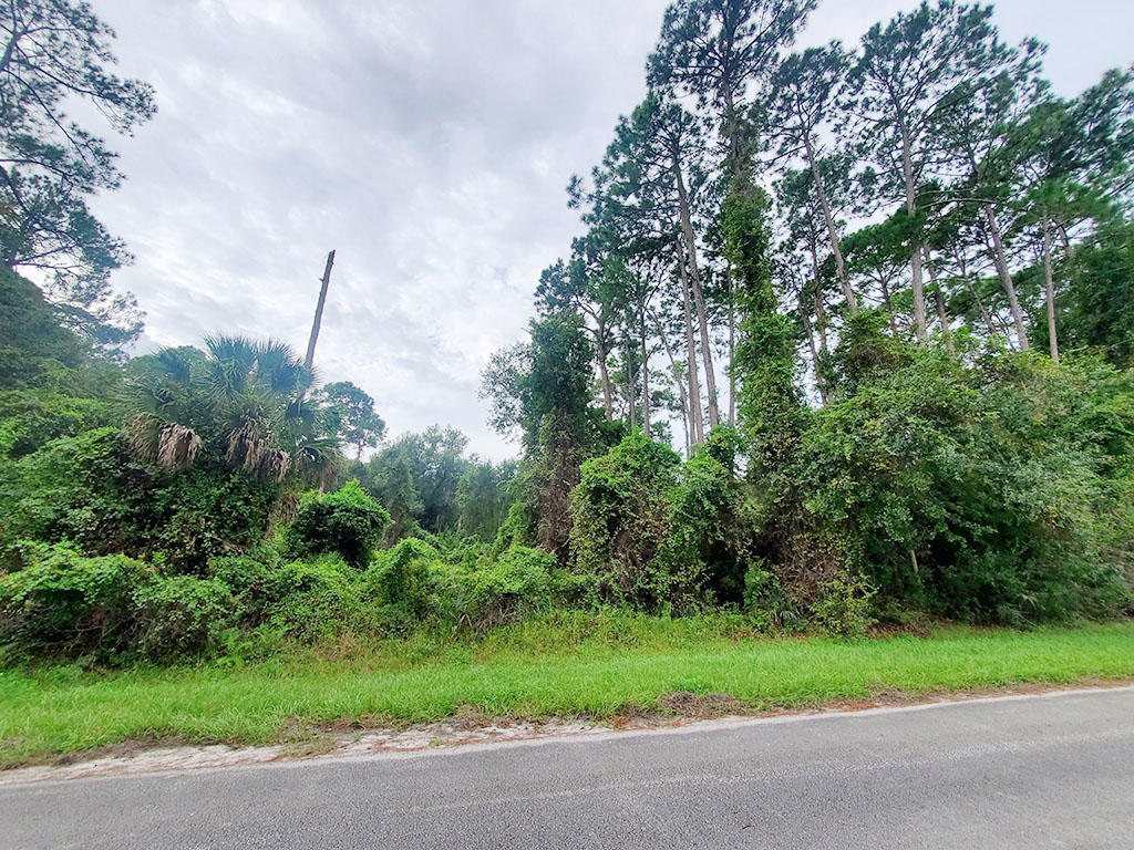 Mobile Home Friendly Lot Near Famed Coastal Towns - Image 3