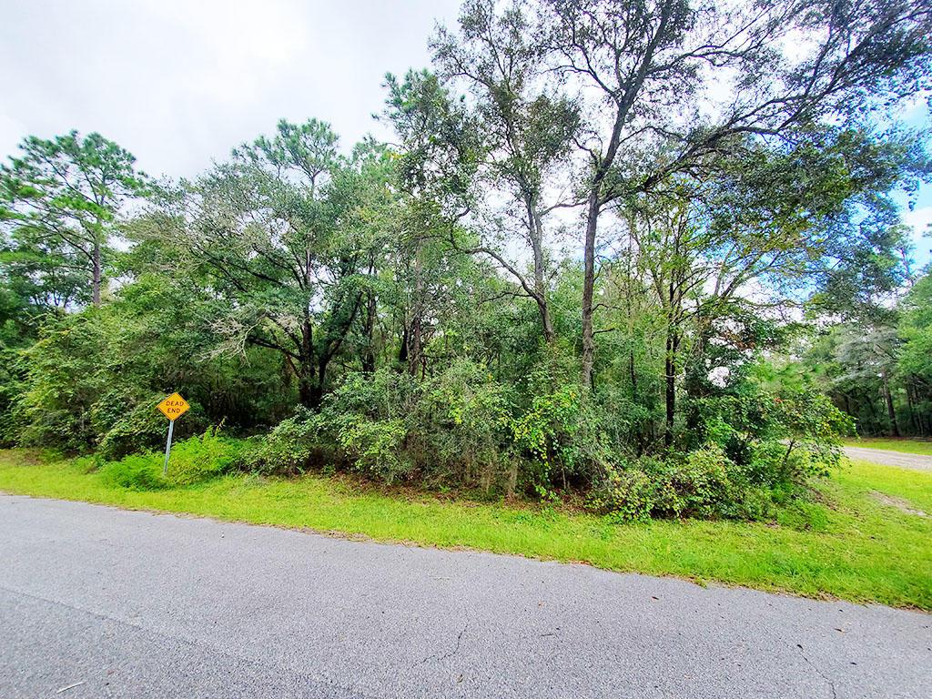 Quarter Acre Near Florida Coast - Image 3