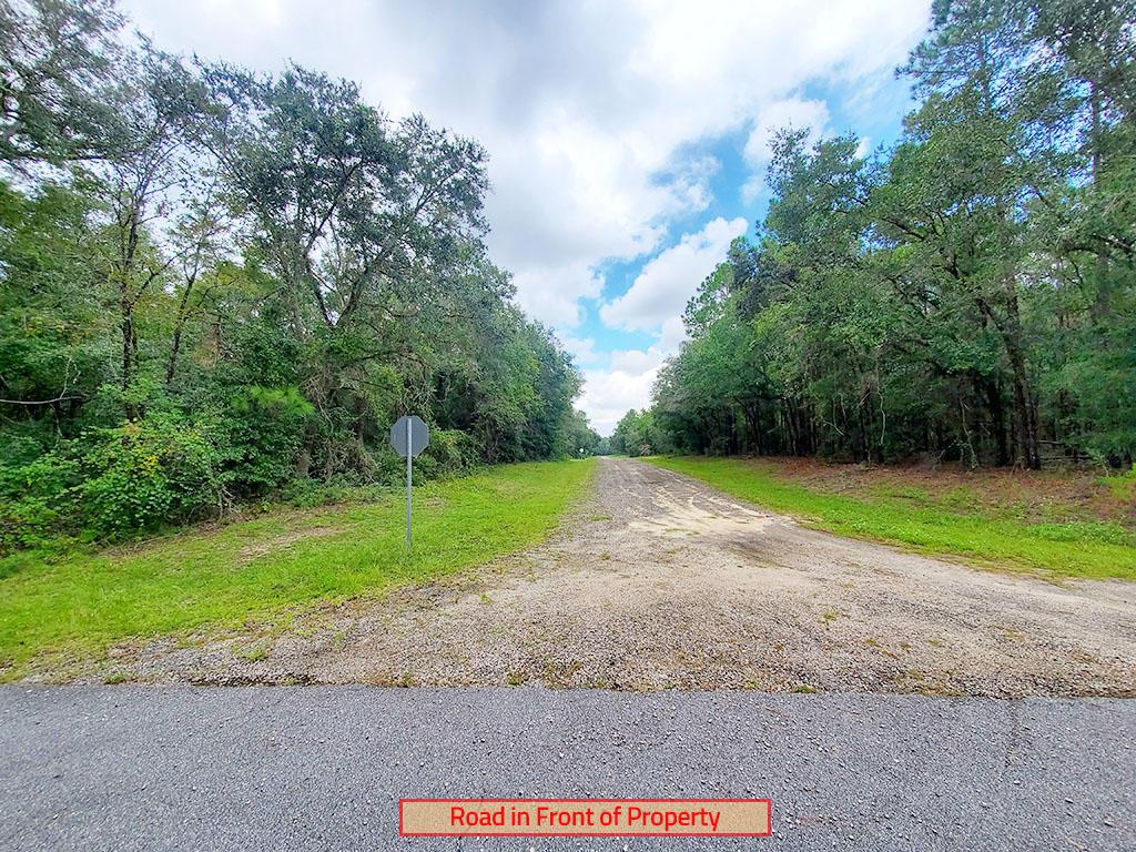 Quarter Acre Near Florida Coast - Image 4