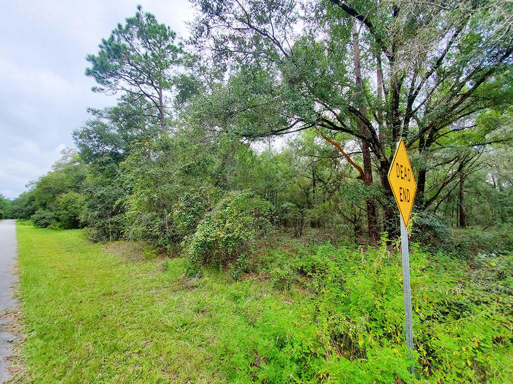 Quarter Acre Near Florida Coast - Image 0