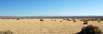 4 Acres of Off the Grid Living in California Desert