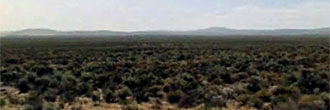 Beautiful Quarter Acre of Secluded Oregon Land