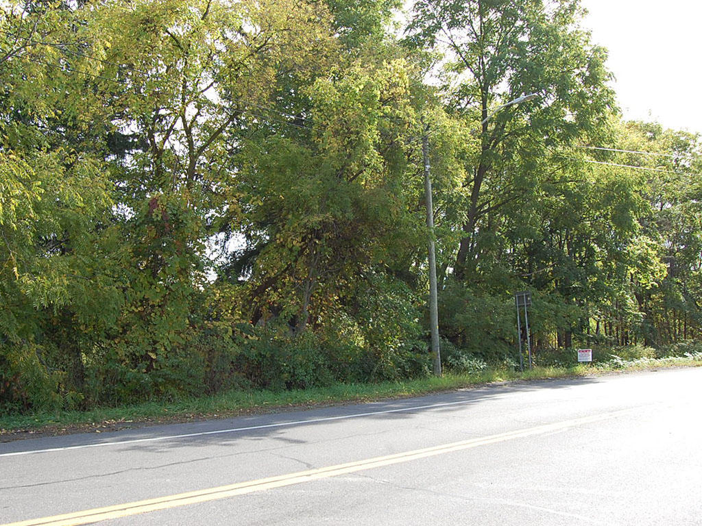 Ideal Business Lot in Bustling Upstate New York - Image 0