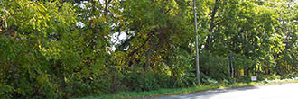 Ideal Business Lot in Bustling Upstate New York